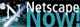 Download Netscape HERE